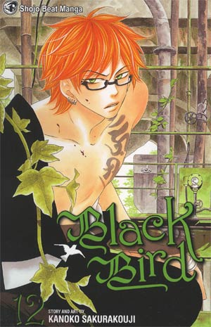Black Bird Vol 12 GN