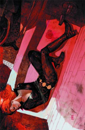 Daredevil End Of Days #6 Regular Alex Maleev Cover