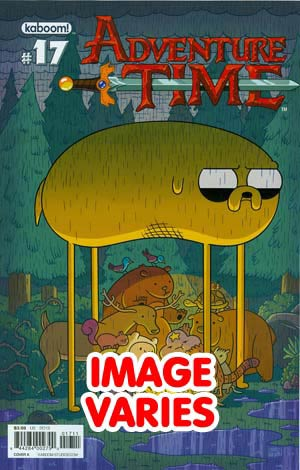 DO NOT USE Adventure Time #17 Regular Cover (Filled Randomly With 1 Of 2 Covers)
