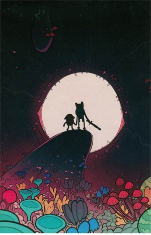Adventure Time #17 Cover C Incentive Jemma Salume Virgin Variant Cover