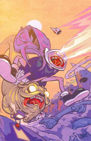 Adventure Time #19 Cover D Incentive Chris Visions Virgin Variant Cover