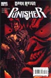 Punisher Vol 7 #3 Target Green Goblin Cover (Dark Reign Tie-In)