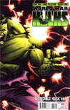 Incredible Hulk Vol 3 #610 Incentive Adam Kubert Variant Cover (World War Hulks Tie-In)