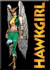Hawkgirl Magnet (29755DC)