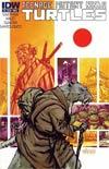 Teenage Mutant Ninja Turtles Vol 5 #5 Regular Dan Duncan Cover