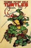 Teenage Mutant Ninja Turtles Classics Vol 1 TP
