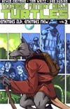 Teenage Mutant Ninja Turtles Ongoing Vol 2 Enemies Old Enemies New TP