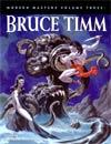 Modern Masters Vol 3 Bruce Timm SC 5th Ptg