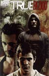True Blood Vol 2 #5 Regular Cover A Tim Bradstreet