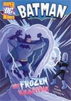 DC Super Heroes Batman My Frozen Valentine Young Readers Novel TP