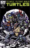 Teenage Mutant Ninja Turtles Vol 5 #16 Incentive Ross Campbell Variant Cover