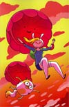 Adventure Time Fionna & Cake #1 Incentive Vera Brosgol Virgin Variant Cover