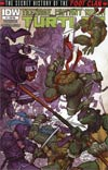 Teenage Mutant Ninja Turtles Secret History Of The Foot Clan #1 Incentive Rafael Grampa Variant Cover