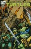 Teenage Mutant Ninja Turtles Vol 5 #21 Variant Kevin Eastman Subscription Cover