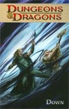 Dungeons & Dragons Vol 3 Down TP