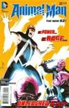 Animal Man Vol 2 #25