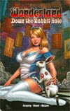 Grimm Fairy Tales Presents Wonderland Down The Rabbit Hole TP