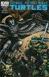 Teenage Mutant Ninja Turtles Vol 5 #32 Cover B Regular Kevin Eastman Cover