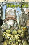 Teenage Mutant Ninja Turtles Turtles In Time #4 Cover A Regular David Petersen Cover