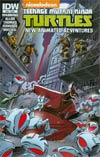 Teenage Mutant Ninja Turtles New Animated Adventures #16 Cover A Regular Dario Brizuela Cover