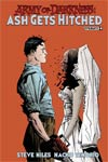 Army Of Darkness Ash Gets Hitched #4 Cover A Regular Jae Lee Cover