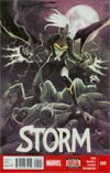 Storm Vol 3 #5 (Death Of Wolverine Tie-In)
