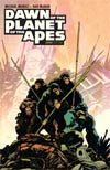 Dawn Of The Planet Of The Apes #1 Cover A Regular Christopher Mitten Cover