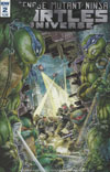 Teenage Mutant Ninja Turtles Universe #2 Cover A Regular Freddie E Williams Cover