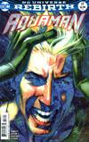 Aquaman Vol 6 #17 Cover B Variant Joshua Middleton Cover