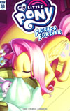 My Little Pony Friends Forever #36 Cover C Incentive Low Zi Rong Variant Cover