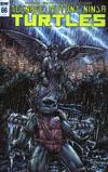 Teenage Mutant Ninja Turtles Vol 5 #66 Cover C Incentive Kevin Eastman Variant Cover