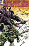 Teenage Mutant Ninja Turtles Vol 5 #67 Cover C Incentive Karl Moline Variant Cover