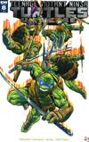 Teenage Mutant Ninja Turtles Universe #8 Cover C Incentive Hugo Petrus Variant Cover