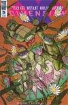Teenage Mutant Ninja Turtles Dimension X #5 Cover B Variant Craig Rousseau Cover