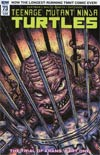 Teenage Mutant Ninja Turtles Vol 5 #73 Cover B Variant Kevin Eastman Cover