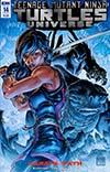 Teenage Mutant Ninja Turtles Universe #14 Cover A Regular Freddie E Williams II Cover