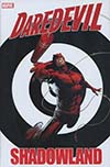 Daredevil Shadowland Omnibus HC Direct Market Billy Tan Variant Cover