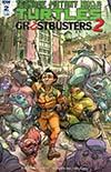 Teenage Mutant Ninja Turtles Ghostbusters II #2 Cover B Variant Pablo Tunica Cover