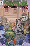 Teenage Mutant Ninja Turtles Ghostbusters II #4 Cover A Regular Dan Schoening Cover