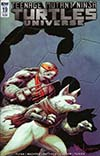 Teenage Mutant Ninja Turtles Universe #19 Cover B Variant Dave Wachter Cover