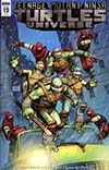Teenage Mutant Ninja Turtles Universe #19 Cover C Incentive Raffaele Ienco Variant Cover
