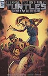 Teenage Mutant Ninja Turtles Universe #20 Cover B Variant Dave Wachter Cover