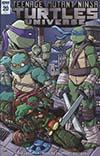 Teenage Mutant Ninja Turtles Universe #20 Cover C Incentive Tim Lattie Variant Cover