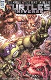 Teenage Mutant Ninja Turtles Universe #21 Cover A Regular Freddie E Williams II Cover