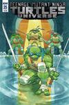 Teenage Mutant Ninja Turtles Universe #25 Cover B Variant Nelson Daniel Cover