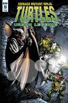 Teenage Mutant Ninja Turtles Urban Legends #5 Cover A Regular Frank Fosco Cover