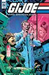 GI Joe A Real American Hero #258 Cover B Variant John Royle Cover