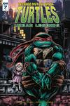Teenage Mutant Ninja Turtles Urban Legends #7 Cover C Incentive Kevin Eastman Variant Cover