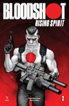 Bloodshot Rising Spirit #2 Cover B Variant Leif Jones Cover