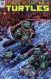 Teenage Mutant Ninja Turtles Vol 5 #89 Cover B Variant Kevin Eastman Cover